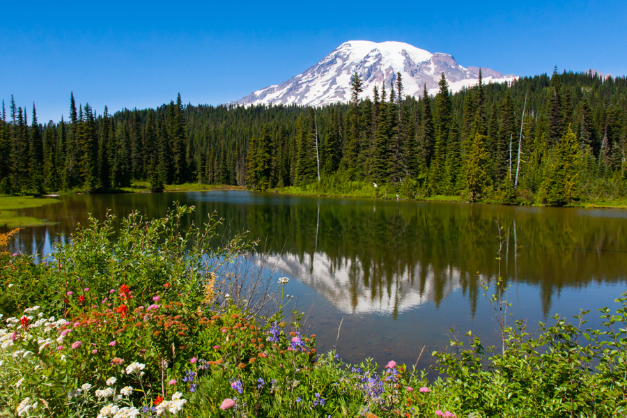 Mt Rainier and Reflection Lakes
